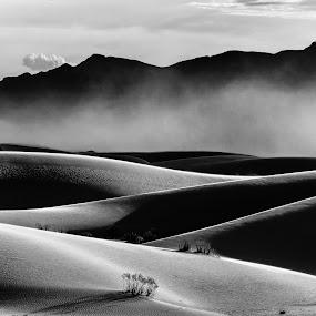 Storm Passing by Dan Girard - Black & White Landscapes ( dunes, dan_girard_photography, nature, white sands national monument, 2015, dan girard photography, new mexico, dan-girard-photography )