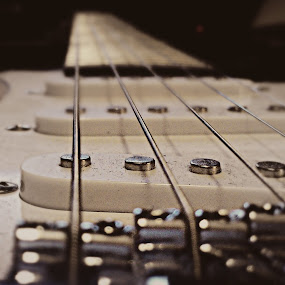 Strings by Jackson Visser - Artistic Objects Musical Instruments ( music, electric, guitar, strings, instrument, close up )