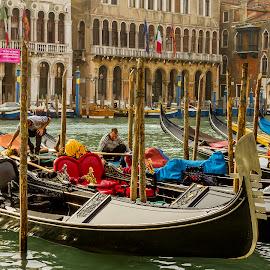 Gondolas On The Grand Canal Venice Italy by Graham Mulrooney - City,  Street & Park  Neighborhoods ( water, boatmen, building, ornate, boatman, grand canal, boats, posts, cushions, yellow, poles, boat, structures, gondola, horizontal, mediterranean, buildings, venice, gondolas, gold, italy )
