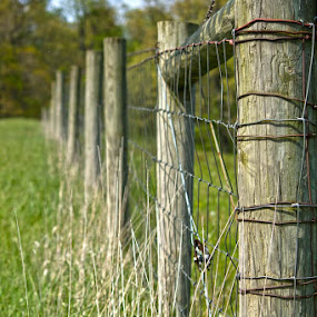 Fence in the Meadow by Michelle Amos - Artistic Objects Other Objects
