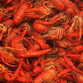 Boiled Louisiana Crawfish by Ron Olivier - Food & Drink Cooking & Baking ( boiled louisiana crawfish,  )