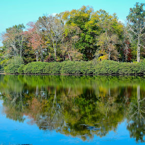 Green Lane Reservior 2 by John Ogden - Landscapes Waterscapes ( fall, shoreline, trees, reflections, lake )