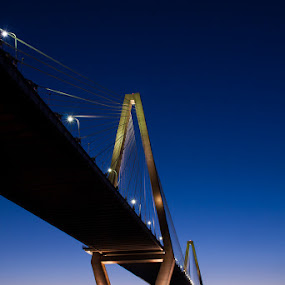 by Daniel Gorman - Buildings & Architecture Bridges & Suspended Structures ( charleston, arthur ravenel jr bridge, psri 2013,  )