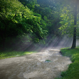 Spring Mill Park by Lorna Littrell - Landscapes Waterscapes ( nature, waterscape, creek, sunlight, misty, sun rays )