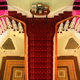by Susan Marshall - Buildings & Architecture Other Interior ( stairs interior, staircase, steps )