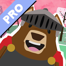 Mr. Bear Princess Pro