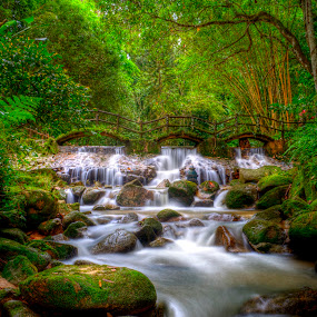 Flowing by Nadzli Azlan - Landscapes Forests
