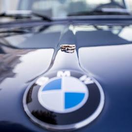 BMW rings by SOTIRIOS SARAFIS - Wedding Details ( photooftheday, ring, photo, photos, bmw, photographers, photograph, rings, car, photographer, wedding, photography, photoshoot )