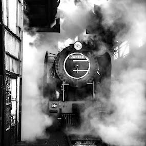 Janine by Riaan Www.rampix.co.uk - Transportation Trains
