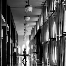 Walking in the palace. by Hung Vo - City,  Street & Park  Amusement Parks ( monochromatic, walking, monochrome, black and white, bnw, palace, walk )
