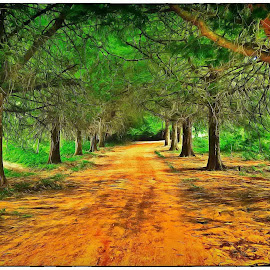 Beautiful lane leading onto a farm by Glenn Visser - Digital Art Places ( farm, art, trees, road, lane )