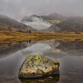 Blea Tarn by Steve BB - Nature Up Close Water ( mountains, lower langdales, cumbria, waterscape, blea tarn, vista, trees, landscape )