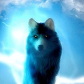 App Glowing Wolf Live Wallpaper apk for kindle fire