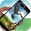 Scorpion Live Wallpaper APK for Kindle Fire