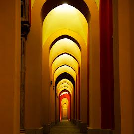 by Sanam Salehian - Buildings & Architecture Architectural Detail