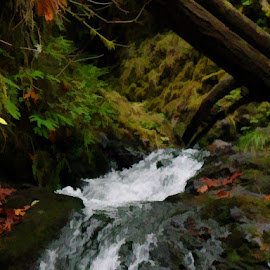 Beauty of Washington State by Will McNamee - Digital Art Places ( dld3us@aol.com, gigart@aol.com, aundiram@msn.com, danielmcnamee@comcast.net, mcnamee2169@yahoo.com, ronmead179@comcast.net )