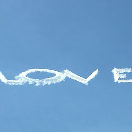The Sky Loves Me by Kristine Nicholas - Novices Only Objects & Still Life ( sign, clouds, love, signs, blue sky, sky, plane, letter, airplane, signage, writing, letters )