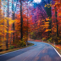Driving Hazards for Fall post image