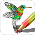 Free Download Coloring APK for Samsung