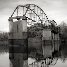 Half the Bridge I used to be by Rob Heber - Buildings & Architecture Bridges & Suspended Structures ( shore, crossing, water reflections, natural light, reflection, stream, monochrome, glossy, black and white, columns, architecture, remote, rusty, engineering, birds, concrete supports, mirror, rusting, nature, secluded, metal, tree line, creek, shoreline, abandoned bridge, reflective, water, mirrored image, glassy, reflections in water, scenic, calm water, rural, concrete, reflecting, old bridge, rusted, outdoors, trees, smooth water, rusted old bridge, bridge, design, birds in flight, river, decay )