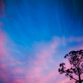 God's Beauty! by Diane Johnson - Landscapes Cloud Formations ( cloud formations, blue sky, red formations, trees, wavy clouds )