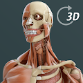 Visual Anatomy 3D | Human APK Descargar