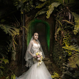 The Wedding Boss by Wang David - Wedding Bride