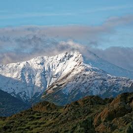 Hiking in Alaska by Marc Baisden - Landscapes Mountains & Hills ( adventure, alaska, travel, hiking, exploration, national forests )