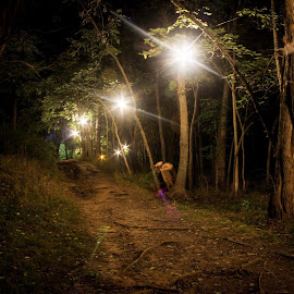 Path Through The Darkness by David Hill - Novices Only Landscapes ( night hiking, woods, hiking )