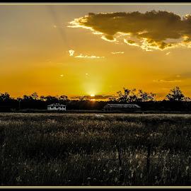 From afar by Scott Sandford - Landscapes Prairies, Meadows & Fields (  )