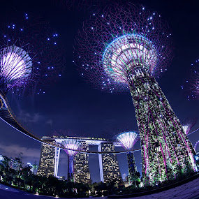 SPACEGARDEN by Frank Photography - Buildings & Architecture Architectural Detail ( holiday, 2013, bay, asia, night, by, the, garden, singapore, city, city at night, street at night, park at night, nightlife, night life, nighttime in the city, photographers, taking a photo, photographing, photographers taking a photo, snapping a shot )