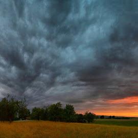 mračí se nebe by Jitka Rosslerová - Landscapes Prairies, Meadows & Fields ( mračna, pole, louka, nebe, západ slunce )