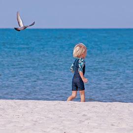 by Natalia Vikhtinskaya - Babies & Children Toddlers ( child, birds on the beach, sea )