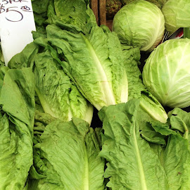 $2.00 Each, 3 For $5.00 by Eric Michaels - Food & Drink Fruits & Vegetables ( sign, artichokes, afternoon, farmer's market, sunny, green, lettuce, money, greengrocer, display )