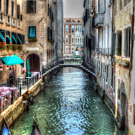 Venice by Steve Rowe - City,  Street & Park  Street Scenes
