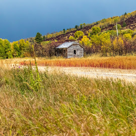 Old Homestead by Chad Roberts - Buildings & Architecture Public & Historical ( old house, hail, building, darby canyon, house, grand tetons, homestead, historic )