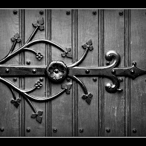 Gate Ornament by Natalia Puspa - Buildings & Architecture Other Exteriors ( black and white, indonesia, britrockholic, jakarta, teman )