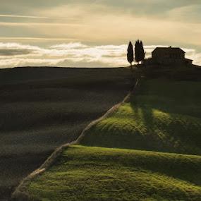 tuscany by Lorenzo Moggi - Landscapes Mountains & Hills ( hills, tuscany, sunrise )