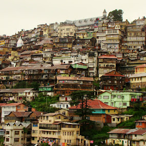 Queen Of Hills-shimla by Raajesh Thakur - City,  Street & Park  Historic Districts ( hills, winter, himalya, shimla, himachal )