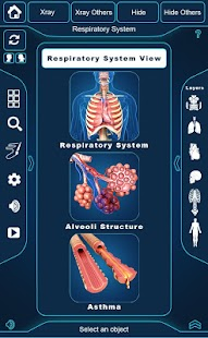 My Respiratory System Anatomy screenshot for Android