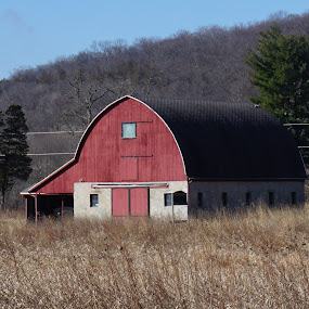 Barn by Kathy Kehl - Buildings & Architecture Homes ( building, red, barn, buildings, barns,  )