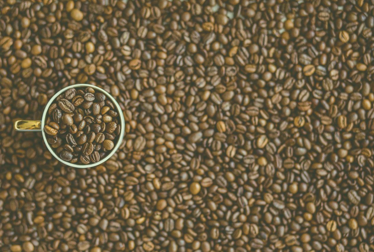 Realcafé: entenda a sustentabilidade em uma indústria de café