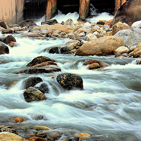 River Jaldhaka by Pinaki Pradhan - Landscapes Waterscapes ( stream, waterscape, cascade, jaldhaka river )