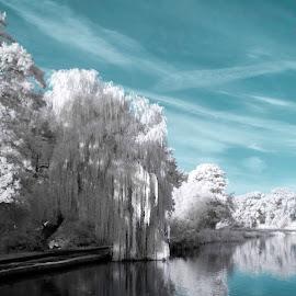 by Balan Emilian - City,  Street & Park  City Parks