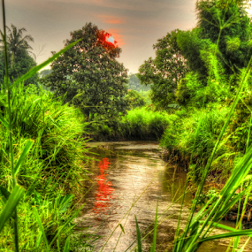 last kampung by Tonny Haryanto - Nature Up Close Trees & Bushes ( water, wild, nature, grass, green, valley, river )