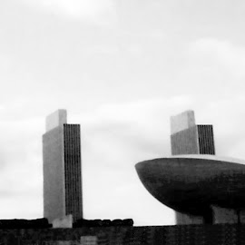 The Egg 1 Black And White by RMC Rochester - Black & White Buildings & Architecture ( abstract, black and white, random, buildings, architecture, city,  )