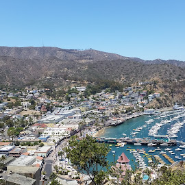 Catalina Island by Maddy Martinez - Novices Only Landscapes ( colors, boats, sea, town, landscape, island,  )