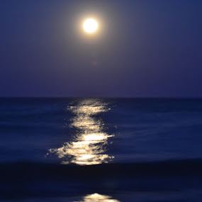 Nearly Full Moon Over Bethany Beach     by Raymond Paul - Landscapes Beaches ( moon, monochrome, blue, waves, long exposure, seascape, landscape )