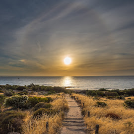Hallett Cove Beach by Mark Anolak - Landscapes Sunsets & Sunrises ( sunset,  )
