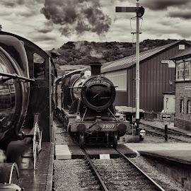the meeting by Shaun Healey - Transportation Trains ( steam engines signal loco tracks )